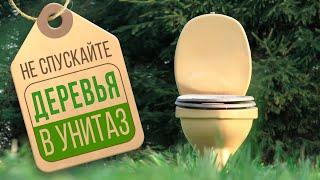 ???? Туалетная бумага обзор. Какая туалетная бумага вредна для окружающей среды и почему? Тайга Эко