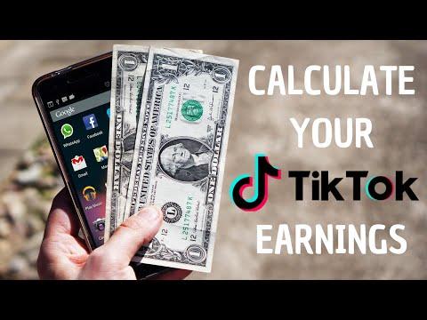 tik tok money calculator influencer