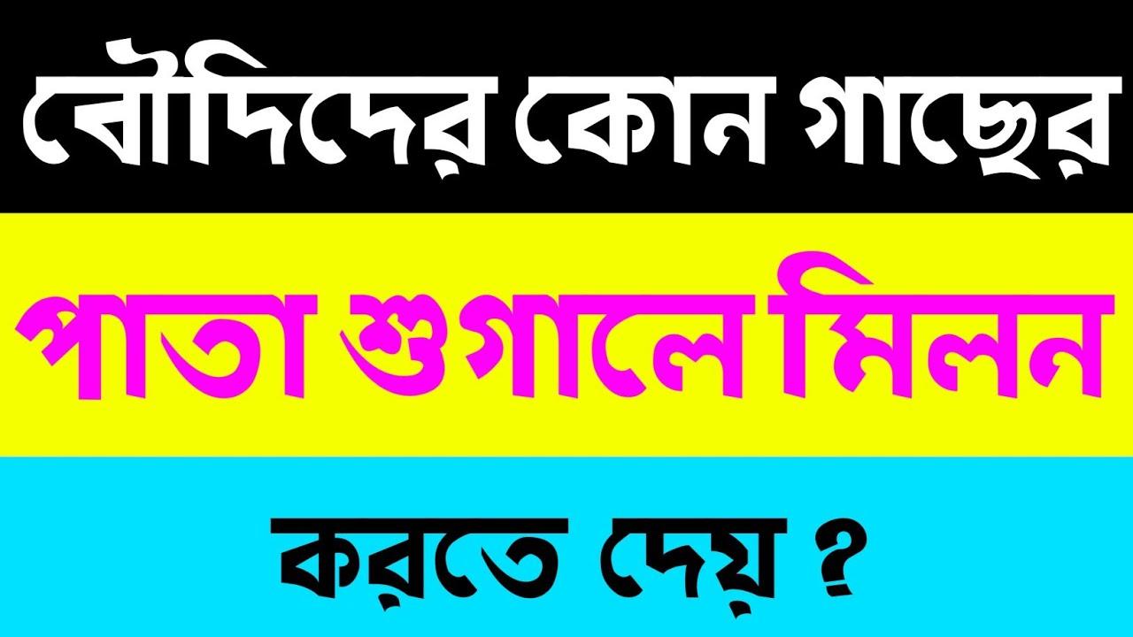 Download Bangla Gk Question and Answer | Bangla General Knowledge | Bangla mojar GK | বৌদির গোপন তথ্য | Quiz