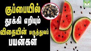 Watermelon Seeds Health Benefits - Tamil Health & beauty Tips