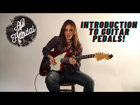 a-beginner's-guide:-introduction-to-pedals