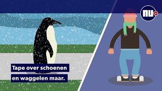 Niet uitglijden in de kou? Doe een pinguïn na