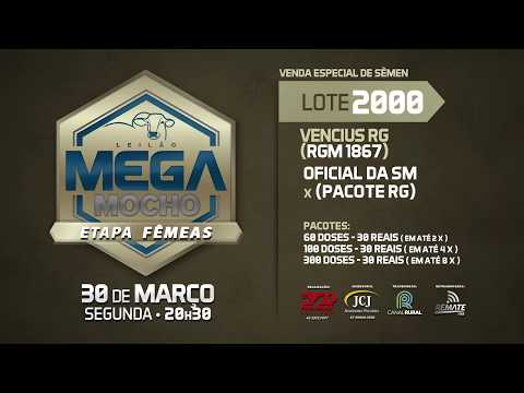 LOTE 2000