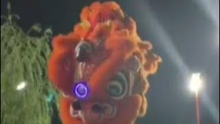 Barongsai 2020 !! Great Lion Dance In Indonesia | Happy Lunar New Year