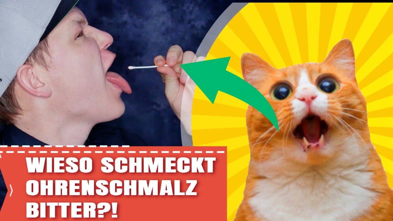 010 #unboxyourear - Wieso schmeckt Ohrenschmalz bitter?