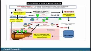 Interactions Between Apo E and Amyloid Beta .. Neurodegeneration by Ian J. Martins