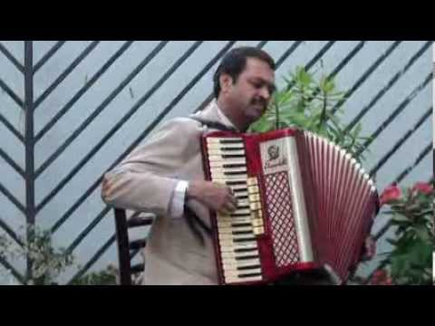 Dil Ki Nazar Se Instrumental | Accordion