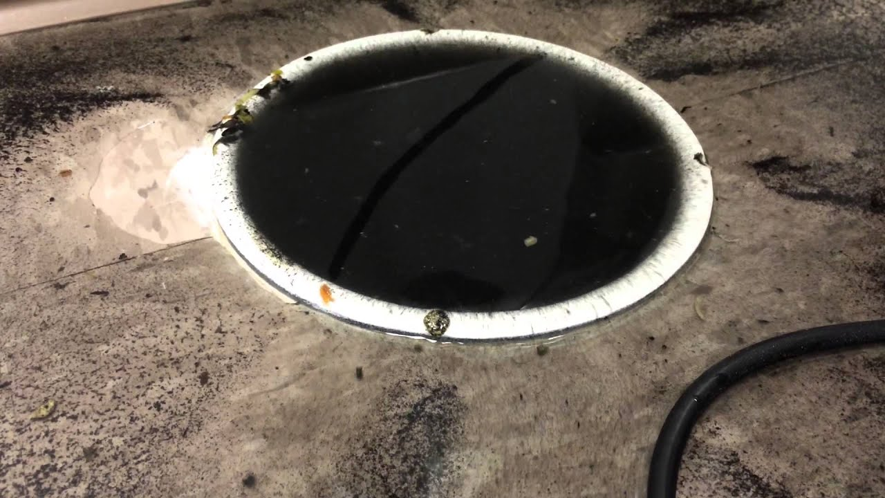 Floor Drain Backing Up With Black Water Youtube
