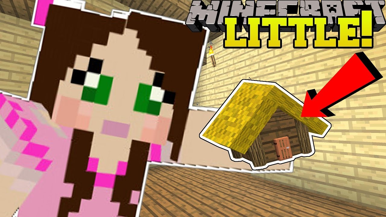 Minecraft Little Houses Tiny Houses With Secret Rooms