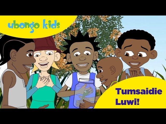 Ubongo Kids Webisode 42 - Tumsaidie Luwi! | Kundi la Wanyama