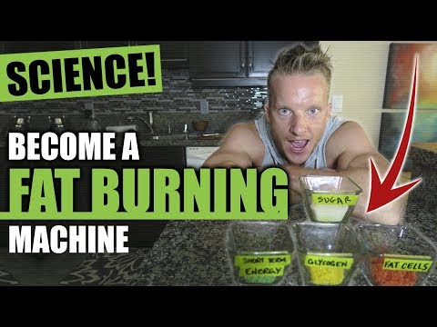 TURN YOUR BODY INTO A FAT BURNING MACHINE FOR LIFE [AVOID INSULIN RESISTANCE] | LiveLeanTV