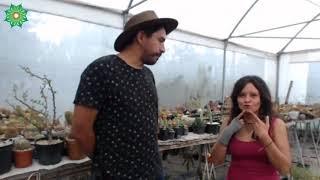 0053 Conociendo a Opuntia