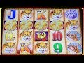 😲 WOW AGAIN 4 COINS TRIGGER BONUS  ❗️ 😲 BUFFALO GOLD SLOT MACHINE POKIES ✨