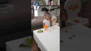 14 month old laughing cute laugh at cow sneezing baby einstein baby Macdonald farm