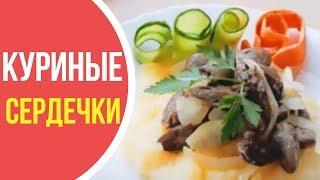 Как приготовить куриные сердечки в сметане: домашние рецепты вкусно и быстро