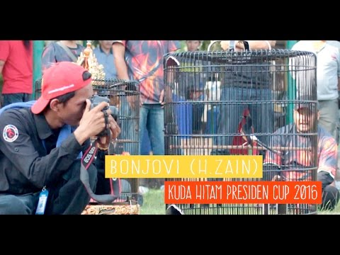 PRESIDEN CUP : Suara Bon Jovi Gacor Milik H.Zain/Aka DLA Jadi Kuda Hitam di Presiden Cup
