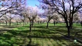 👉Смотрите срочно новые песни таджикские 2017🎶🎹🎻🎼🎺