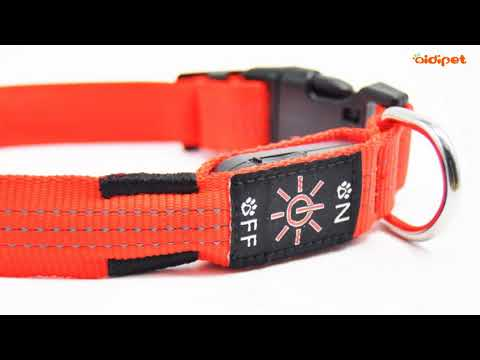 AIDIPET Hollow belt dog collar, USB rechargeable nylon LED pet collar