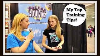 Dog Training Tips Featuring Sara And Hero, The Super Collie