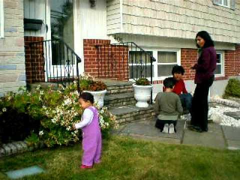 A BUBLI FAMILY NOV 1 08.AVI