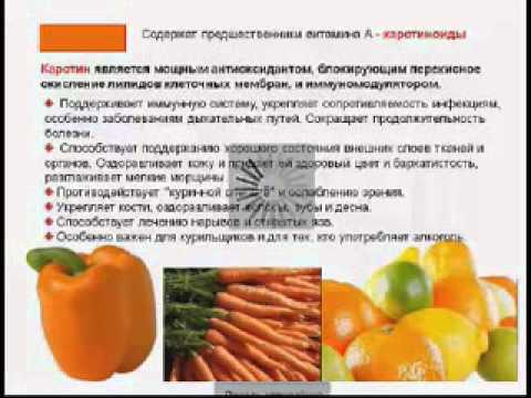 школа правильного питания онлайн