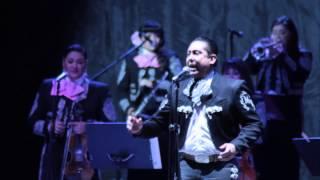 Arturo Vargas and Mariachi Divas de Cindy Shea Dueto A Puro Dolor YouTube Videos