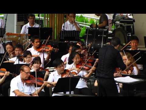 STRAUSS - On The Beautiful Blue Danube Waltzes, Op. 314