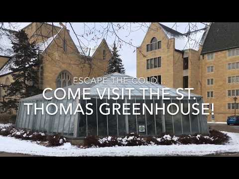 St. Thomas' Biology Greenhouse Offers Winter Hours
