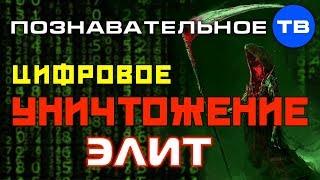 Цифровое уничтожение слизня национальных элит (Познавательное ТВ, роман Василишин)