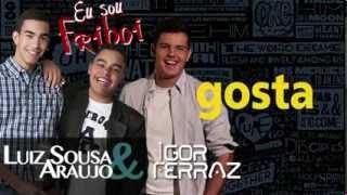 Baixar Luiz Sousa & Araujo - EU SOU FRIBOI (Part. Especial Igor Ferraz)