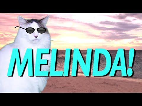 happy birthday melinda HAPPY BIRTHDAY MELINDA!   EPIC CAT Happy Birthday Song   YouTube happy birthday melinda