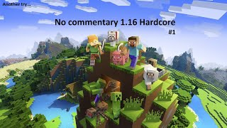 HOUSE & BASIC RESOURCES - Minecraft 1.16 Hardcore (No Commentary) 1.