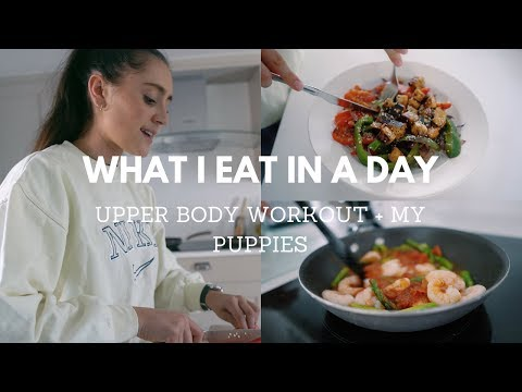 WHAT I EAT IN A DAY, AN UPPER BODY WORKOUT + MY PUPPIES - my first video!