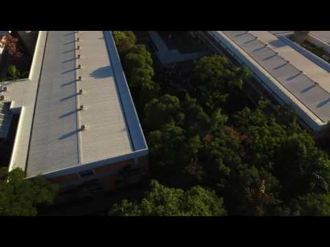 Global Game Jam Curitiba - Vista do Drone da Beenoculus