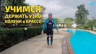Плавание брассом: учимся держать колени узко при толчке ногами! Для чего это делать и как?!