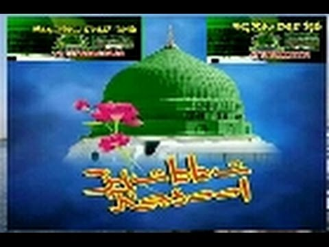 sunni whatsapp group