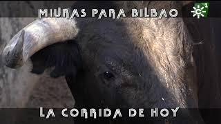Embarque impresionante de toros de Miura para Bilbao | Toros desde Andalucía