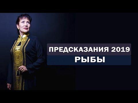 Предсказания на 2019 год. Предсказание рыбы. Гороскоп на 2019 рыбы. Алла Громова