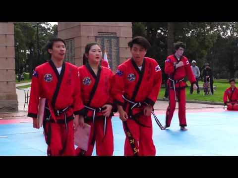 Martial Arts - Hapkido College of Australia Eagles Burwood Park Demonstration