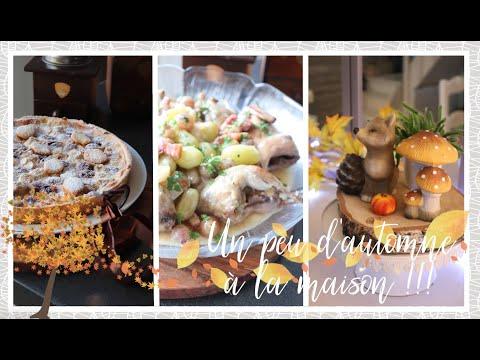vlog-famille-du-22-septembre-:-un-petit-air-automnale,-cailles-aux-raisins-et-tarte-amandes-raisins