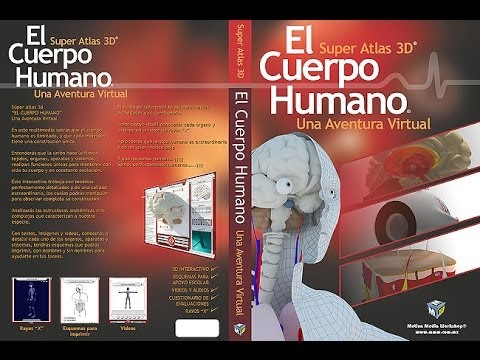 El cuerpo Humano 3D Interactivo - YouTube