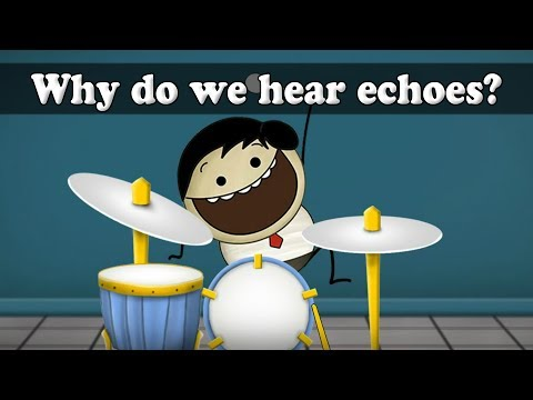 Why do we hear echoes?