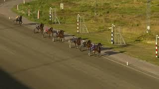 Vidéo de la course PMU PRIX MARDSKOG OCH LINDQVIST