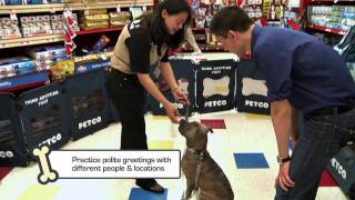 Petco Training Tips: Kickin' The Jumpin' Habit
