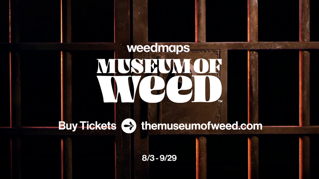 The Museum of Weed in Los Angeles is a marketing hit