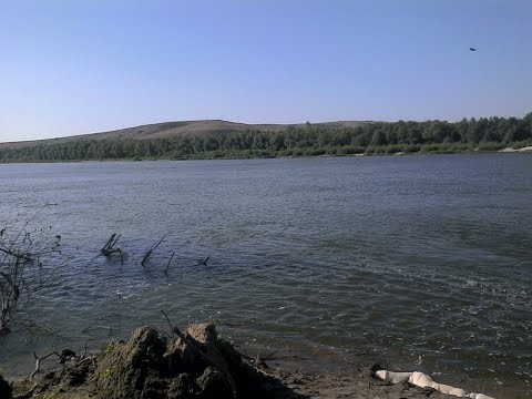 Рыбалка на спиннинг. Дон. Иловля. Природа. И многое другое...