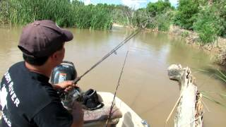 Fishing For Catfish