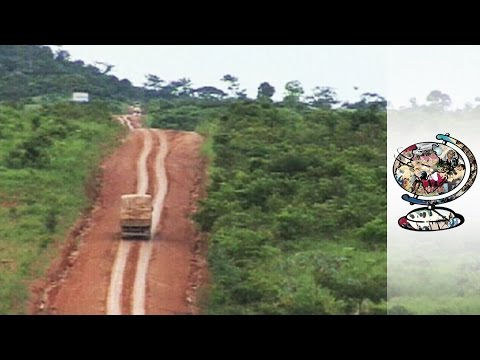 The Controversial Road Destroying The Amazon