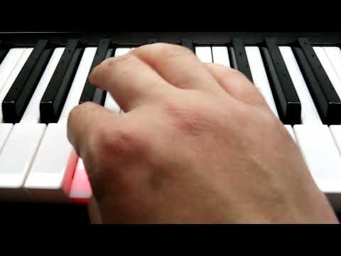 Синтезатор CASIO LK-266. Органы. Не дали записать видео.