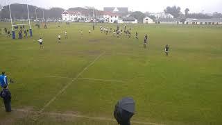 School Rugby Rondebosch wins